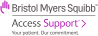 BMS Access Support Logo link